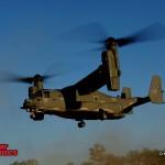 Osprey-1 800x600