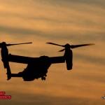 Osprey-3 800x600
