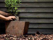 rock-solid planter