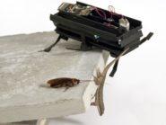 Roach_gecko_robot