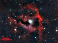 Seagull Nebula 800x600