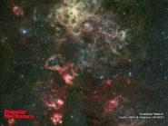 Tarantula Nebula 800x600