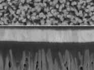 SEM-zinc-oxide-nanowires-photovoltaic-cell