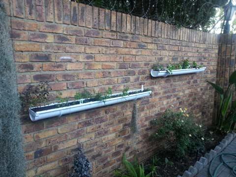 Roof gutter herb garden