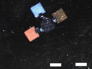 DNA-glue-2
