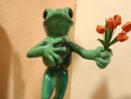 Frog courtship