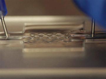bioprinted-blood-vessels-Wyss
