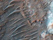 Rare-banded-transverse-aeolian-ridges-Mars