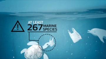 EU plastic bag ban