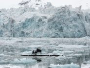 Pianist preforms in Arctic to raise awareness