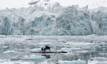 Pianist preforms in Arctic to raise awareness
