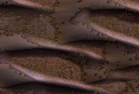 The red planet's frosted dunes
