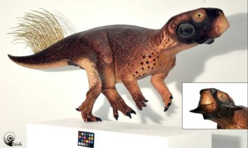Scientists used laser imaging to discover what the Psittacosaurus dinosaur looked like, uncovering details about its habitat in the process