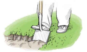 Use a spade to create the perimeter of your hole