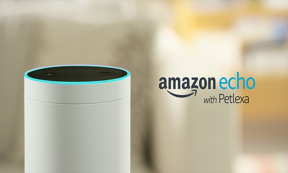 Amazon Echo with Petlexa