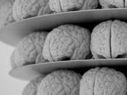 Why some still images trigger seizures
