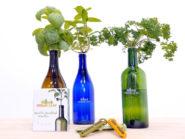 Urban Leaf's bottled plants.
