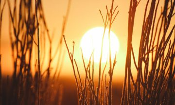 The sun's power can be used to turn CO2 into ethanol