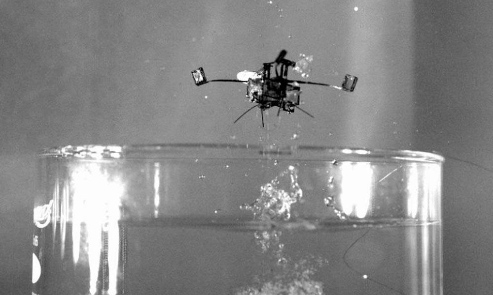 Hybrid robot takes a swim, then explodes into flight