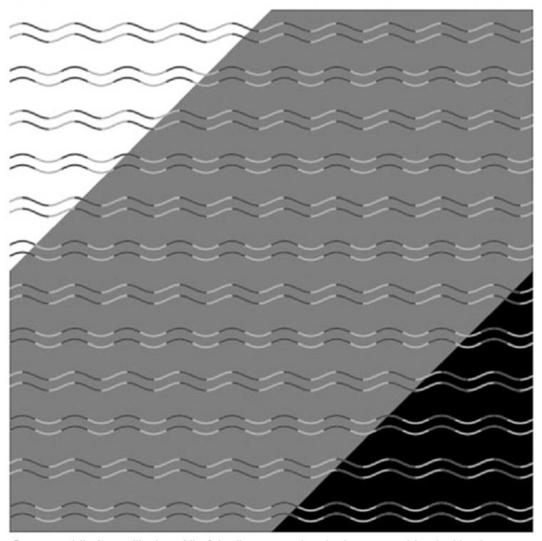 curvature blindness illusion
